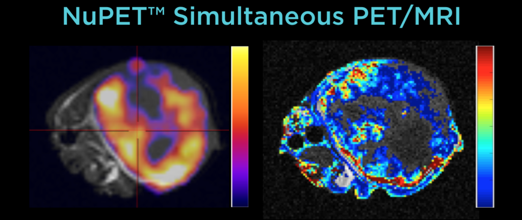 U Arizona NuPET PET-DCE MR Image of A549 mouse tumor
